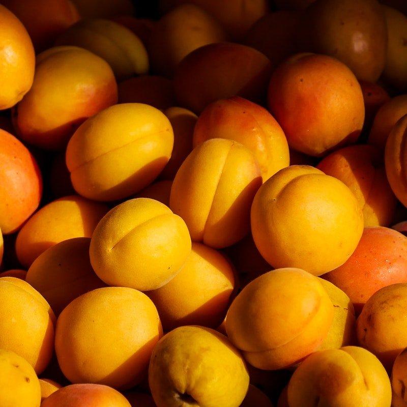 生酮飲食可以吃杏桃嗎?
